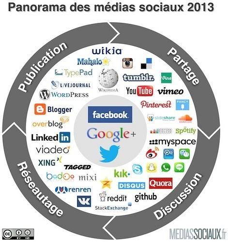 Panorama médias sociaux 2013